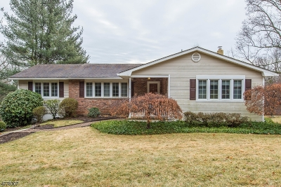 Mount Olive Twp. Single Family Home For Sale: 6 Flanders Drakestown Rd