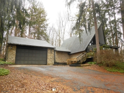 Holland Twp., Milford Boro Single Family Home For Sale: 396 Ellis Rd