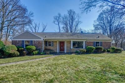 Mountainside Boro Single Family Home For Sale: 1287 Poplar Ave