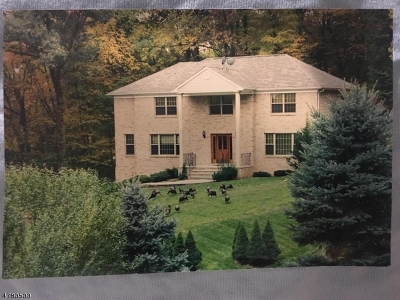 Denville Twp. Single Family Home For Sale: 4 Maysey Ct