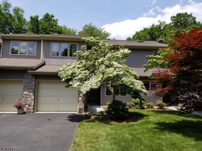 Bernards Twp. Single Family Home For Sale: 31 Roberts Cir