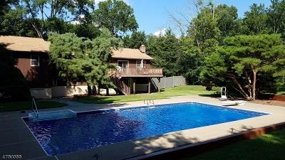 Oakland Boro Single Family Home For Sale: 16 Seminole Ave