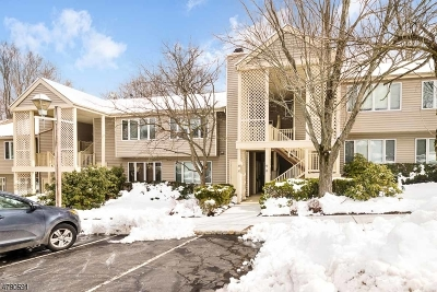 Clinton Twp. Condo/Townhouse For Sale: 37 Augusta Dr #37