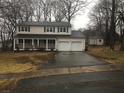 Mount Olive Twp. Single Family Home For Sale: 17 Camelot Dr