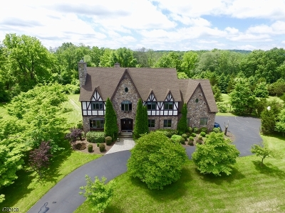 Readington Twp. Single Family Home For Sale: 9 Paterson Rd