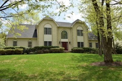 Chester Boro Single Family Home For Sale: 63 Collis Ln