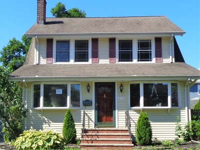 Westfield Town Single Family Home For Sale: 234 Scotch Plains Ave