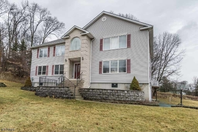 Randolph Twp. Single Family Home For Sale: 25 E Logan Rd