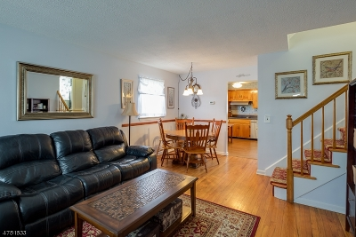 Parsippany Single Family Home For Sale: 6 Ute Ave
