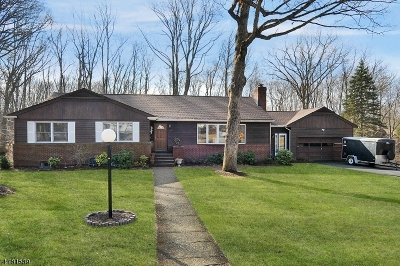 Morris Twp., Morristown Town Single Family Home For Sale: 93 Lidgerwood Pkwy