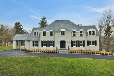 Mendham Boro Single Family Home For Sale: 600 Cherry Ln
