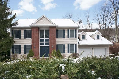 Morris Twp., Morristown Town Single Family Home For Sale: 168 Western Ave