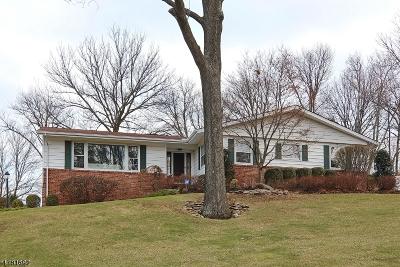 Mountainside Boro Single Family Home For Sale: 1375 Chapel Hl