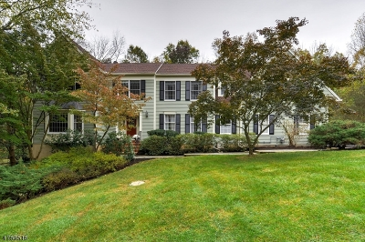 Bedminster Twp. Single Family Home For Sale: 60 Berkshire Ct
