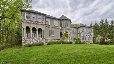 Montville Twp. Single Family Home For Sale: 131a Pine Brook Rd