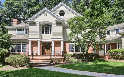 Bernardsville Boro Single Family Home For Sale: 151 Post Kunhardt Rd