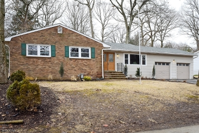 Roxbury Twp. Single Family Home For Sale: 20 Kentwood Rd