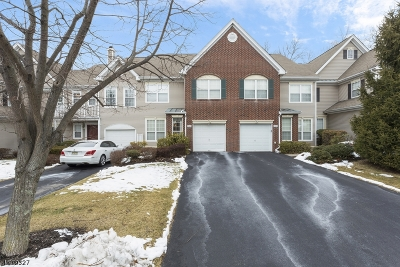Readington Twp. Condo/Townhouse For Sale: 905 S Branch Dr