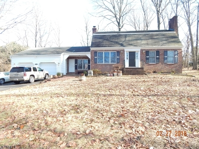Branchburg Twp. Single Family Home For Sale: 125 Otto Rd