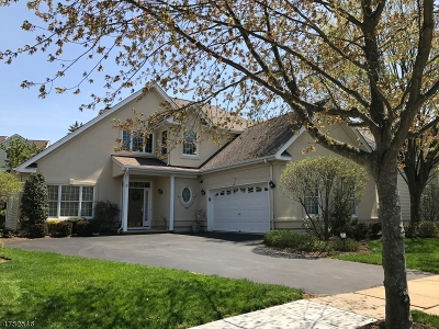 Montgomery Twp. Single Family Home For Sale: 9 Valencia Ct