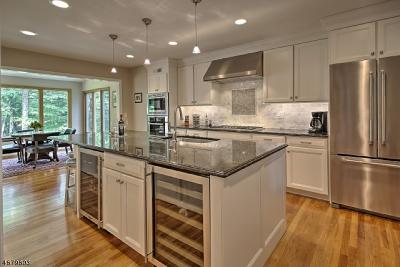 Mendham Boro, Mendham Twp. Single Family Home For Sale: 10 Green Hills Rd