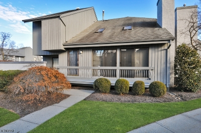 Edison Twp. Condo/Townhouse For Sale: 141 Linda Ln