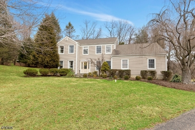 Clinton Twp. Single Family Home For Sale: 7 Grace Dr
