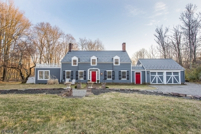 Bedminster Twp., Bernardsville Boro, Far Hills Boro, Mendham Boro, Peapack Gladstone Boro, Harding Twp., Bridgewater Twp. Single Family Home For Sale: 2020 Washington Valley Rd