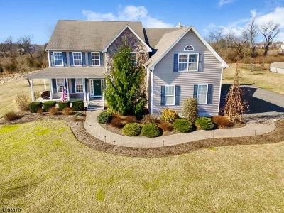Kingwood Twp. Single Family Home For Sale: 1231 County Road 519