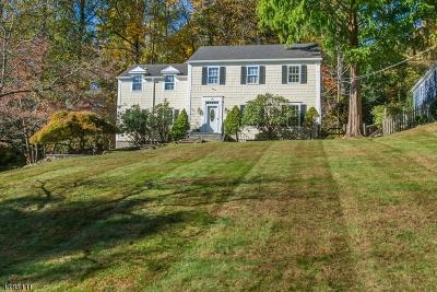 Mendham Boro, Mendham Twp. Single Family Home For Sale: 10 Carroll Dr