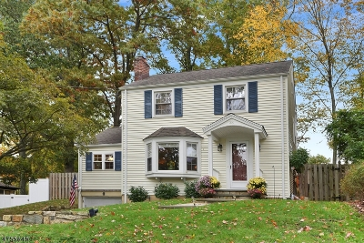 Morris Twp. Single Family Home For Sale: 38 Hillcrest Ave
