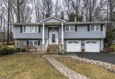 Randolph Twp. Single Family Home For Sale: 6 Carriage Ct