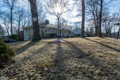 Randolph Twp. Single Family Home For Sale: 1044 Sussex Tpke