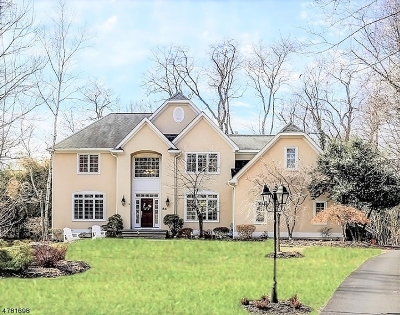 Mountain Lakes Boro Single Family Home For Sale: 084 Pocono Road