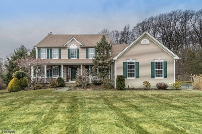 Mount Olive Twp. Single Family Home For Sale: 15 Dorset Dr