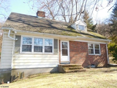 Bethlehem Twp. Single Family Home For Sale: 74 Staats Rd