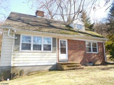 Bethlehem Twp., High Bridge Boro Single Family Home For Sale: 74 Staats Rd