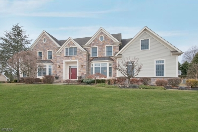 Morris Twp., Morristown Town Single Family Home For Sale: 19 Spencer Dr