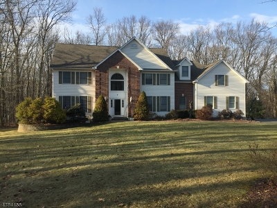 Randolph Twp. Single Family Home For Sale: 6 Tamari Ct