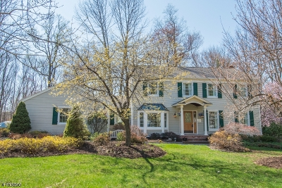 Randolph Twp. Single Family Home For Sale: 6 Wick Ln