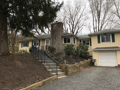 Hillsborough Twp. NJ Single Family Home For Sale: $315,000