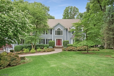 Bernardsville Boro Single Family Home For Sale: 2 Laurelwood Drive