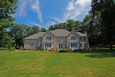 Sparta Twp. Single Family Home For Sale: 31 Angelo Dr