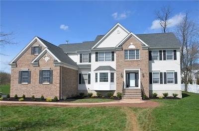 Hillsborough Twp. Single Family Home For Sale: 4 Petrik Farm Rd