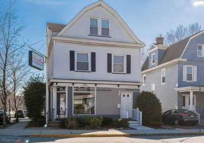 Bloomfield Twp. Commercial For Sale