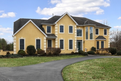 Montgomery Twp. Single Family Home For Sale: 27 Deer Path
