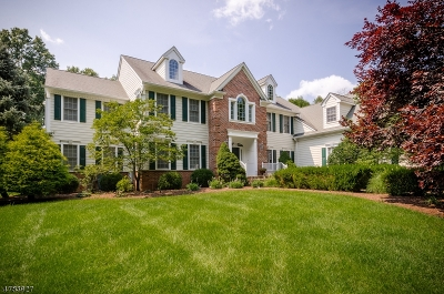 Montgomery Twp. Single Family Home For Sale: 4 Raymond Ln