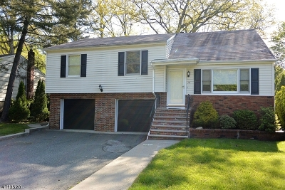 Rockaway Twp. Single Family Home For Sale: 19 Ellen Dr