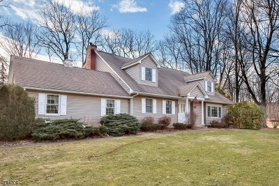 Mount Olive Twp. Single Family Home For Sale: 54 Main Street