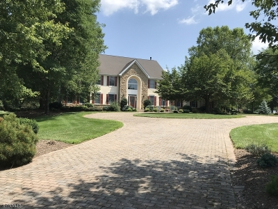 Readington Twp. Single Family Home For Sale: 1 Pond View Lane